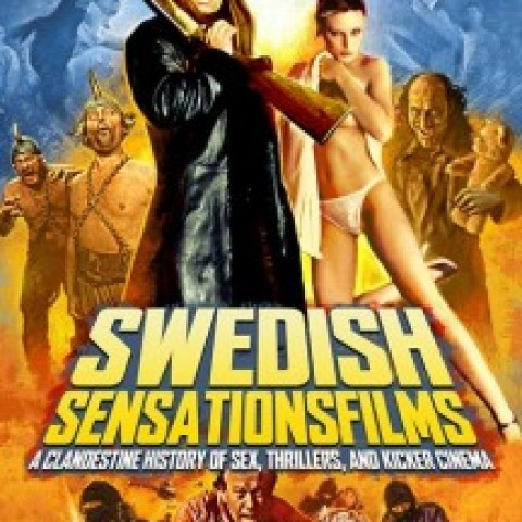 SWEDISH SENSATIONSFILMS: A Clandestine History of Sex, Thrillers, and Kicker Cinema, by Daniel Ekeroth