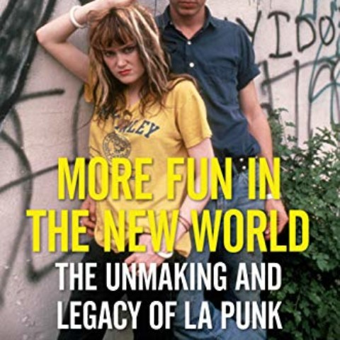 MORE FUN IN THE NEW WORLD: The Unmaking and Legacy of L.A. Punk, by John Doe with Tom DeSavia
